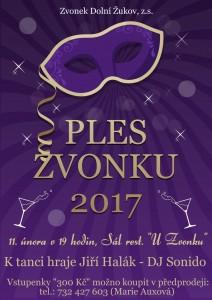 Ples 2017 c